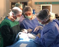 Ağız ve Çene Cerrahisi Hizmeti